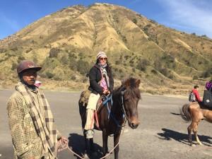 Inilah kendaraan menuju ke Kawah Bromo. Ada @ratrichibi yang sedang menunggang kuda di depan Bukit Teletubbies